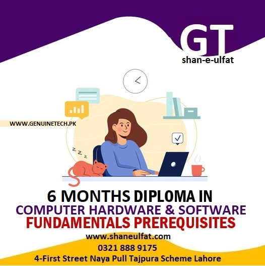 Computer Hardware and Software Courses by shan-e-ulfat
